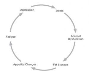 Circolo vizioso dello stress