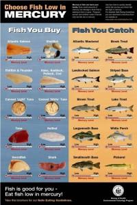 Quale pesce contiene più mercurio?