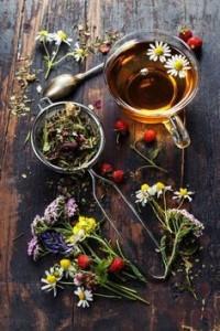 Alimentazione in equilibrio - Amenorrea ipotalamica dieta