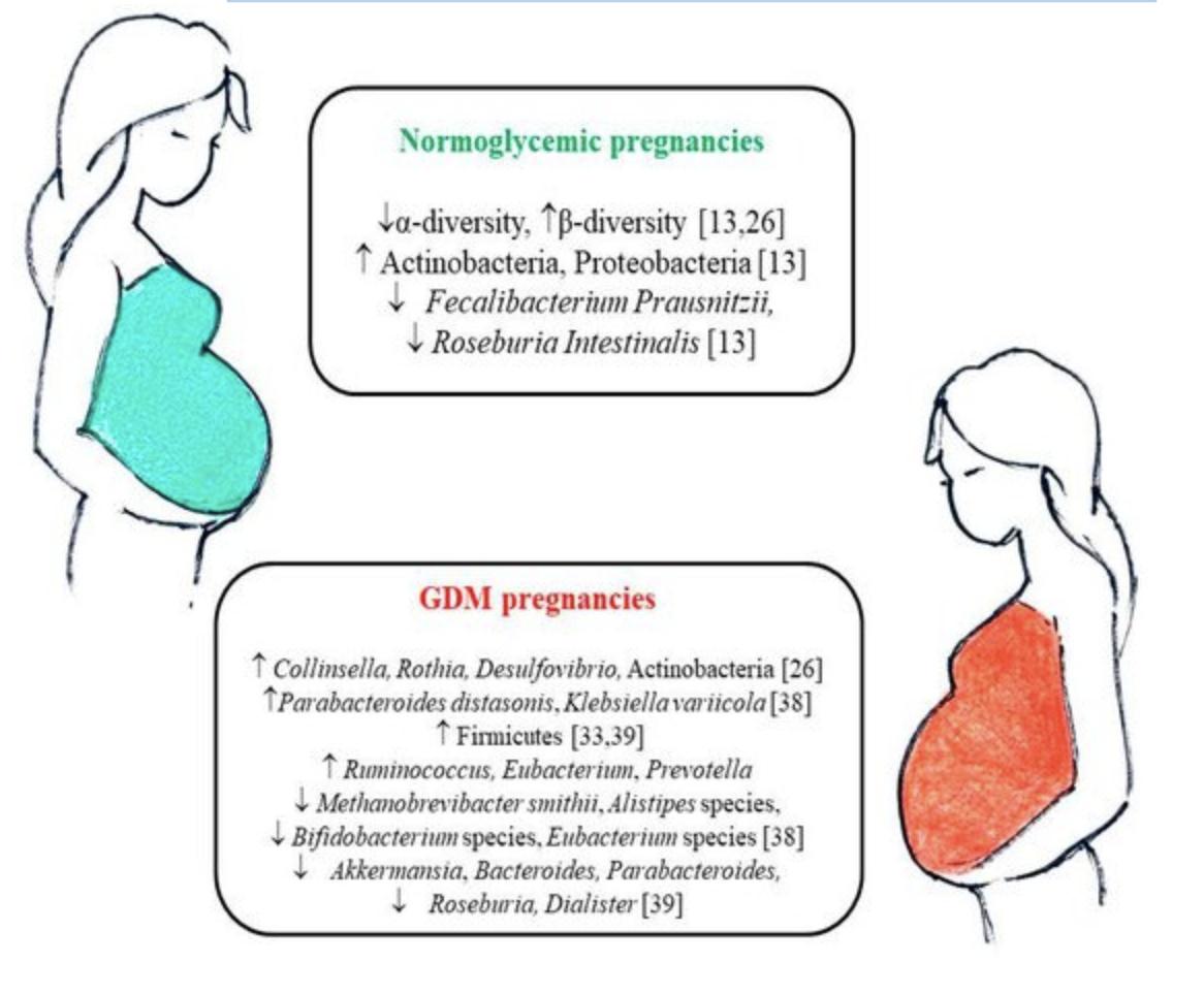 programma di dieta per il diabete gestazionale in gravidanza